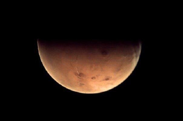 مریخ برای سکونت زمینی ها میکروبی می گردد