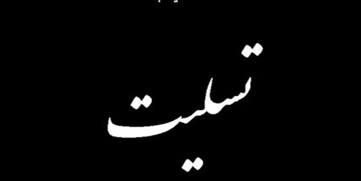 وزیر علوم درگذشت دانش آموختگان دانشگاه ها را در سانحه سقوط هواپیما تسلیت گفت