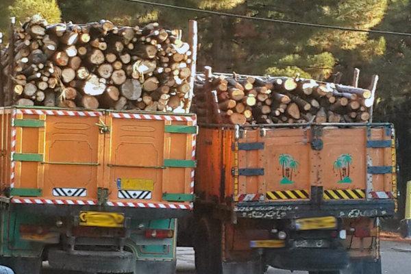 ممنوعیت صدور مجوزهای قطع و حمل چوب تا پانزدهم فروردین 1400