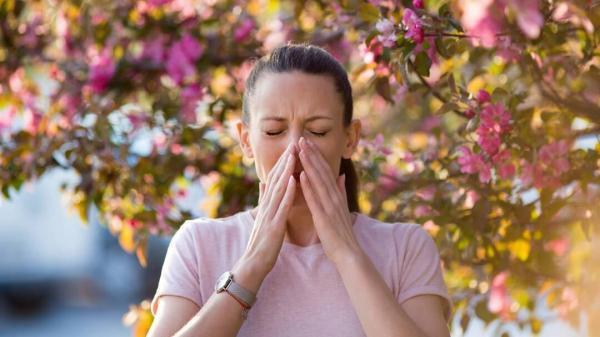 5 گزینه غذایی گیاهی برای کاهش علائم آلرژی بهاره!